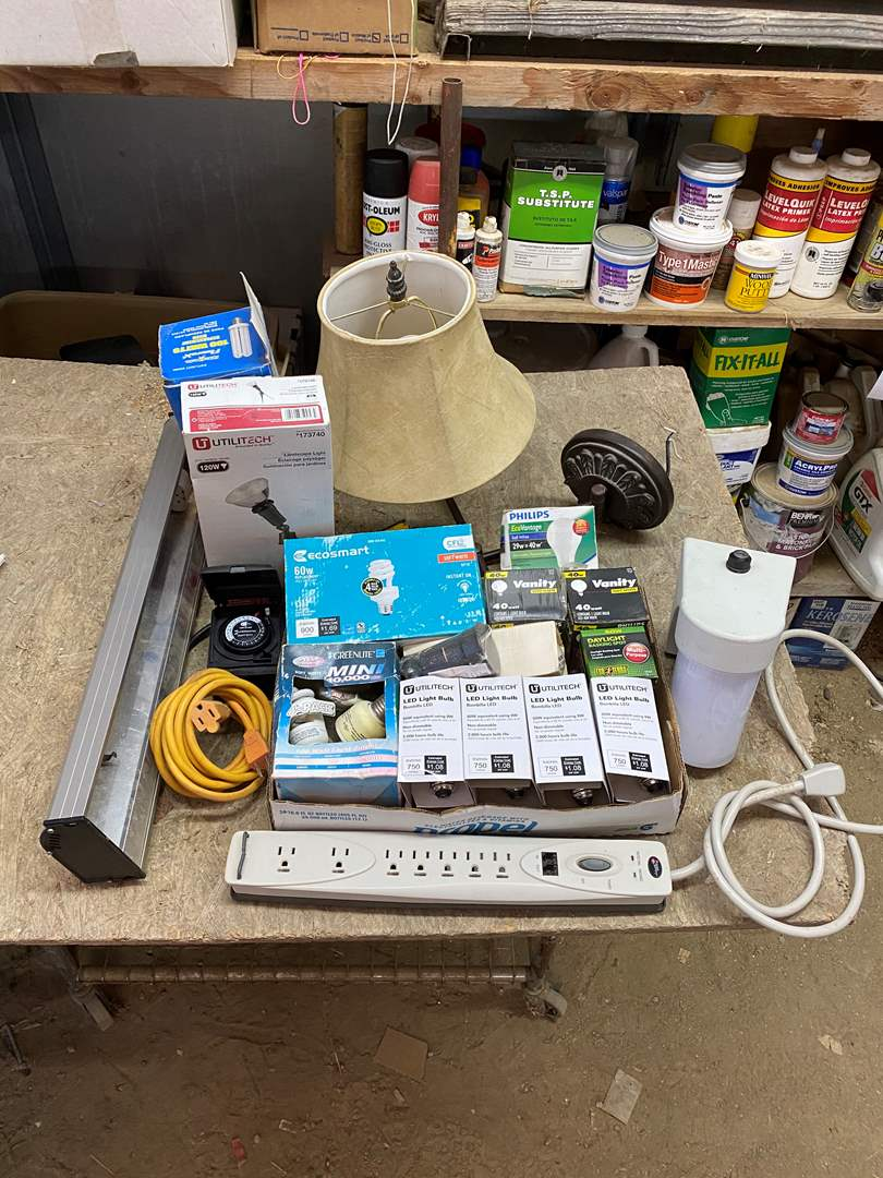 Lot # 351 - LIGHT BULBS, FIXTURES, TIMER AND CORDS (main image)