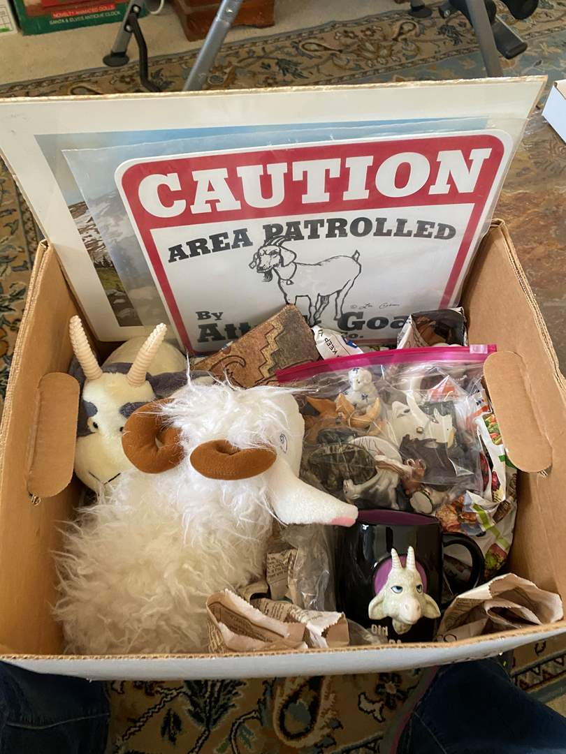 Lot # 68 - BOX OF GOAT THEMED ITEMS (main image)