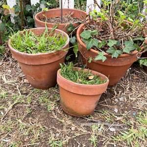 Lot # 506 - Terra Cotta Pots, Various Sizes