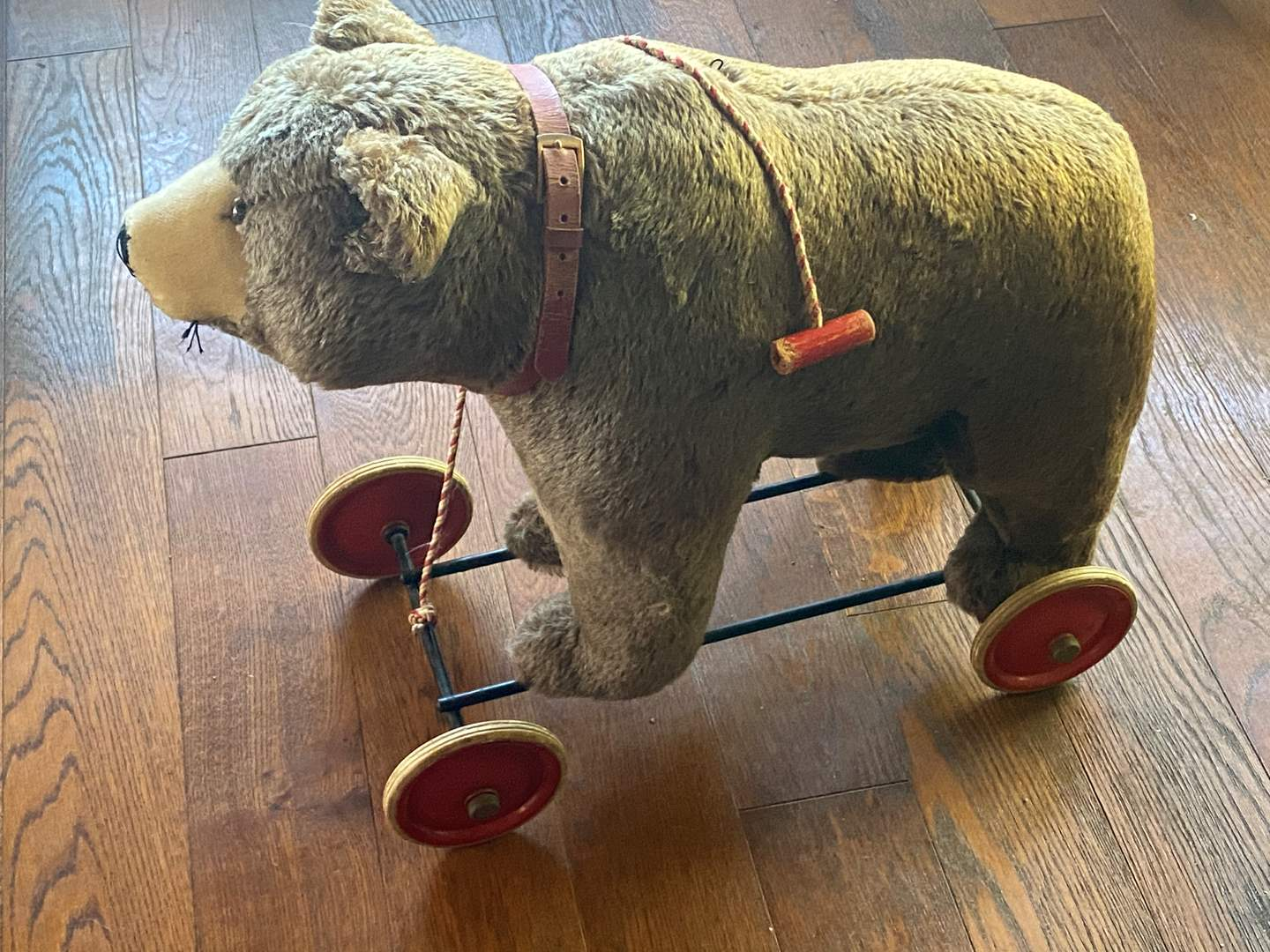 Lot # 656 - Vintage 1930's Steiff Bear on Wheels, Pull String and Growler Works (main image)