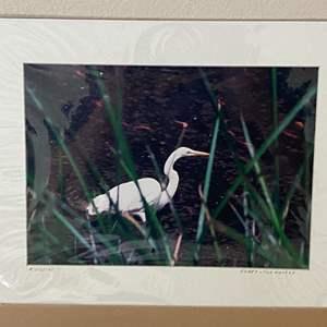 "Lot # 5 - ""Egret Hunter"" Ralph Wessel, Artist Photo Print 12x16"