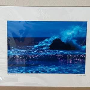 """Lot # 6 - 12x16 """"Skimming"""" Ralph Wessel, Artist Photo Print"""