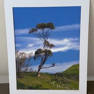 Lot # 13 - 12x16  Ralph Wessel, Artist Photo Print