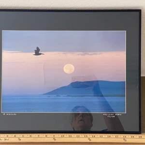 Lot # 40 - Framed 16x20 Pelican Moon Ralph Wessel, Artist Photo Print