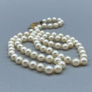 Lot # 43 - Natural pearls