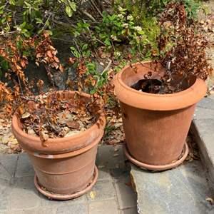 Lot # 56 - Two large terra-cotta pots