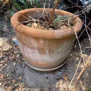 Lot # 66 - Large terra-cotta pot with saucer