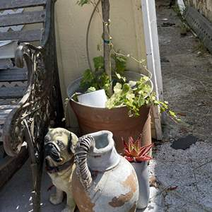 Lot # 216- Planters with Large Honeysuckle, Ceramic Jug, Pug Statue and More