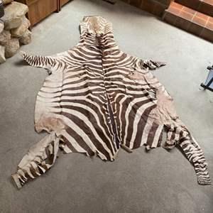 Lot # 8 - Zebra hide