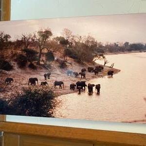 Lot # 96 - Large photo print