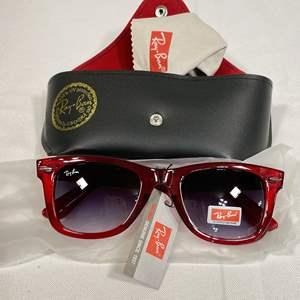 Lot # 53 - Ray Ban Glasses