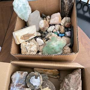 Lot # 66 - Unique Finds Rock, Fossils, petrified wood and geode Collection