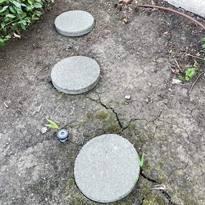 Lot # 107 - Pavers (6) Round and (4) Square