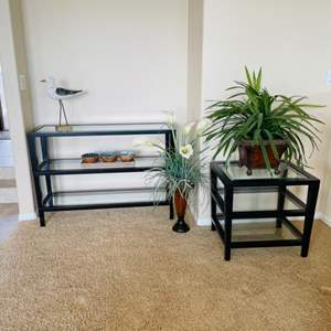 Lot # 10- Glass Top Accent Table, End Table & plants