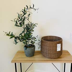 Lot # 20- Brand New Project 62 Basket + Plant