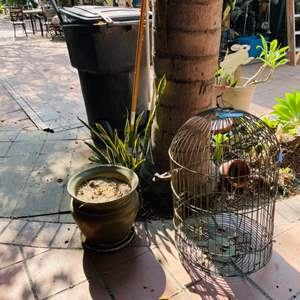 Lot # 167- Vintage Birdcage, and Potted Plant